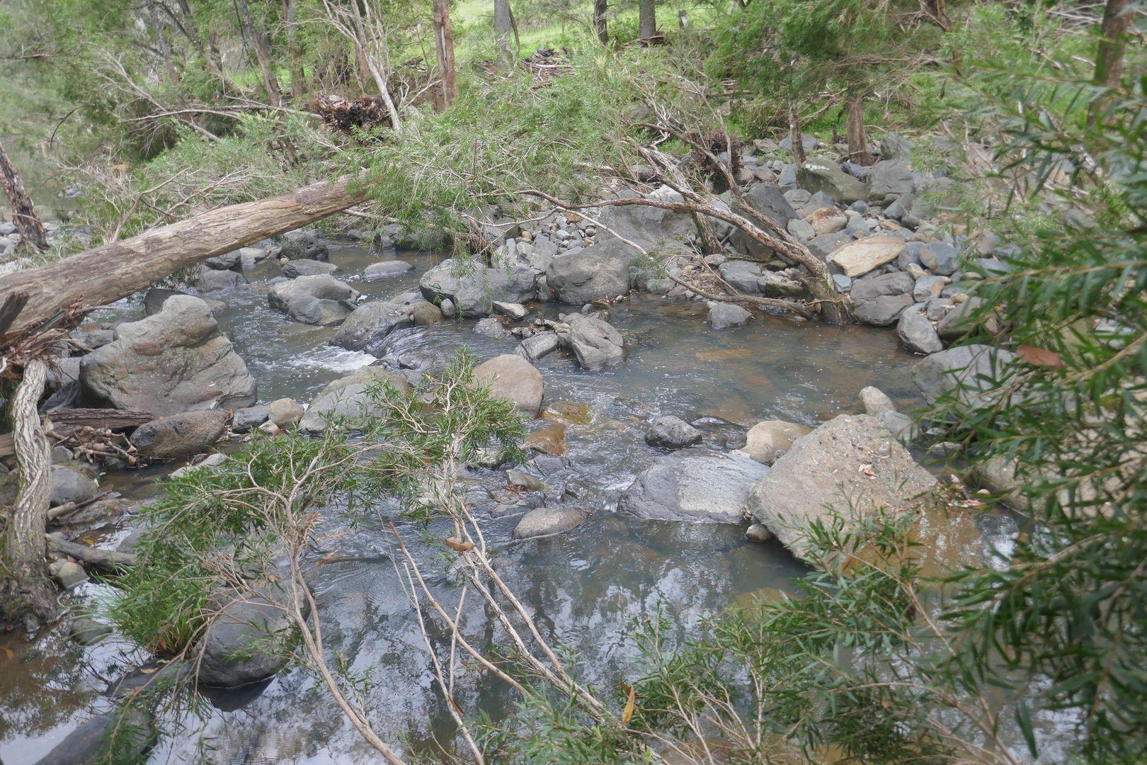 497 Yabbra Rd, Bonalbo NSW 2469, Image 2