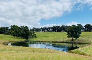 Picture of 71 Blaxland Road, Kanimbla NSW 2790