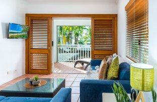 Picture of 214 & 215/119-121 Williams Esplanade, Palm Cove QLD 4879
