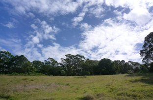 Picture of 49 Old Gympie Rd, Yandina QLD 4561