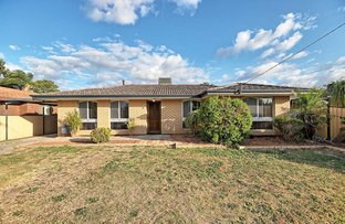 Picture of 8 Willow Way, Maddington WA 6109