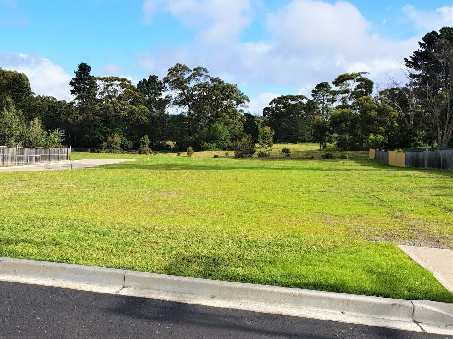 31 Willow Street, Willow Vale NSW 2575, Image 0