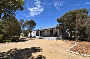 Picture of 11 Peregrine Drive, Marion Bay SA 5575