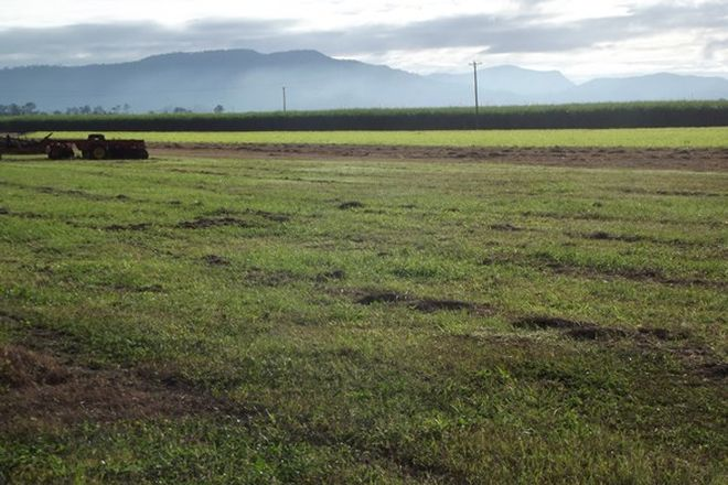 Picture of BENHOLME QLD 4754