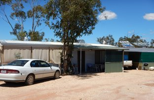 Picture of WLL 14931 Bald Hill, Lightning Ridge NSW 2834