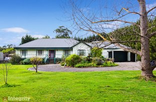 Picture of 185 Don Road, Healesville VIC 3777