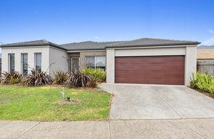 Picture of 1/43 Daintree Way, Ocean Grove VIC 3226
