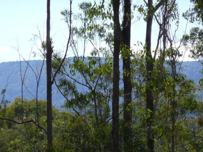 Lot 224 Imbreys Road, Kyogle NSW 2474, Image 0