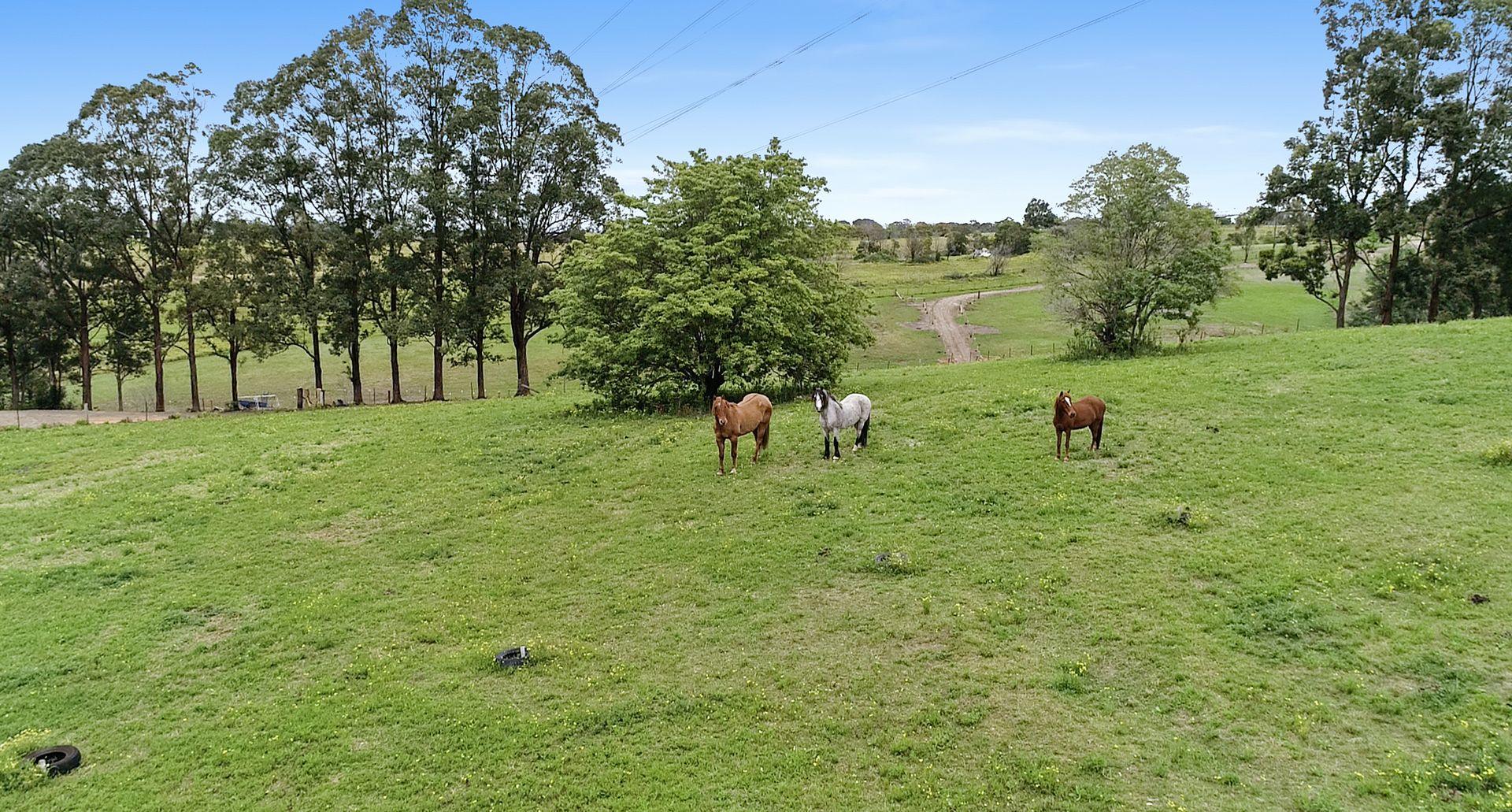558 Comleroy Road, Kurrajong NSW 2758, Image 2