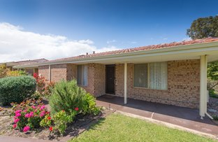 Picture of 37/186 Twickenham Drive, Kingsley WA 6026