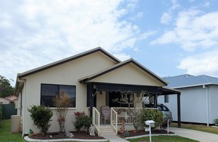 Picture of 83 Ibis Court, Burpengary East QLD 4505