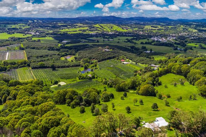 Picture of 985 Hinterland Way, BANGALOW NSW 2479