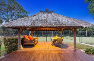 Picture of 8 Killawarra Road, Duffys Forest NSW 2084