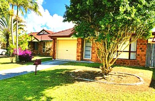 Picture of 16 Cougal Close, Loganholme QLD 4129