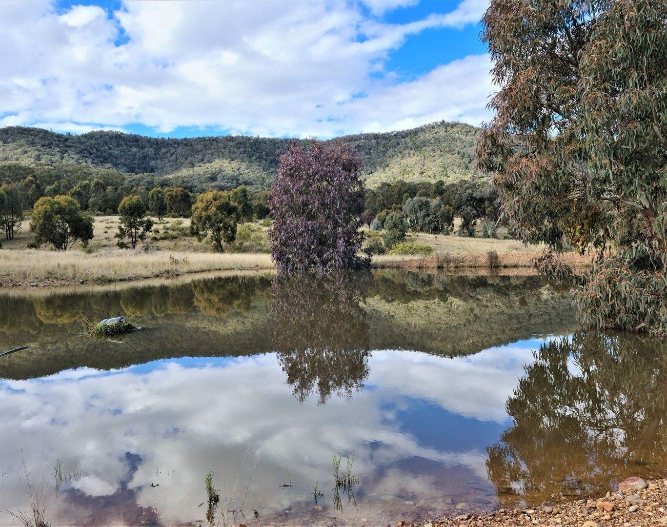 280 EDGELL LANE, Buckaroo NSW 2850, Image 0
