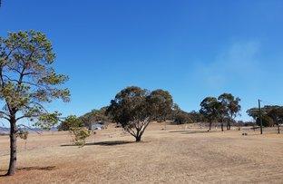 Picture of Ballandean QLD 4382
