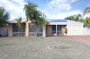 Picture of 19 Sennet Lane, Warnbro WA 6169