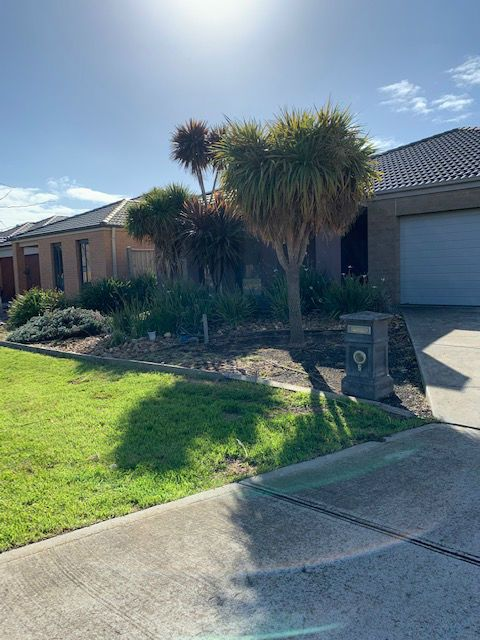 7 Dunlin Crescent, Williams Landing VIC 3027, Image 2
