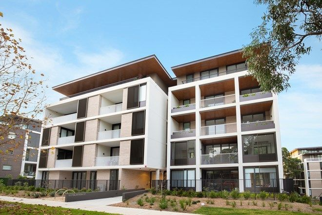 Picture of 2-22 BIRDWOOD AVENUE, LANE COVE, NSW 2066