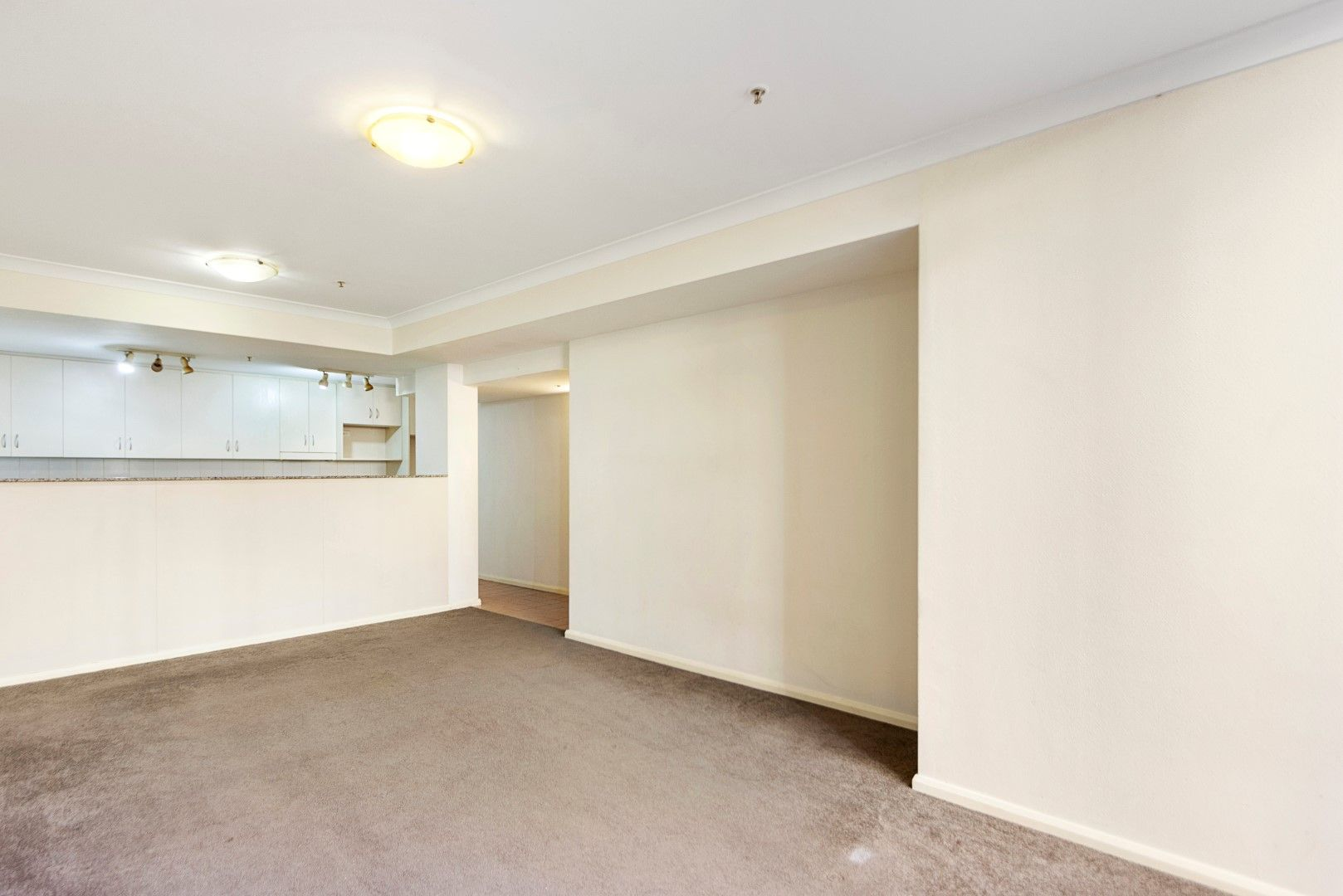 1/2 Brisbane Street, Surry Hills NSW 2010, Image 2