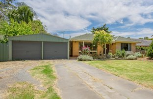 Picture of 29 Cameron Road, Mount Barker SA 5251
