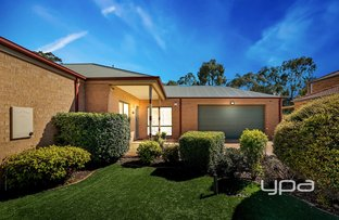 Picture of 23 Hoya Place, Sunbury VIC 3429