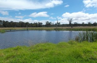 Picture of 54 Barnes Road, Applethorpe QLD 4378