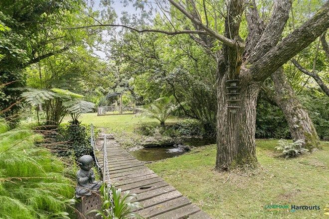 Picture of 3305 Maroondah Highway, TAGGERTY VIC 3714
