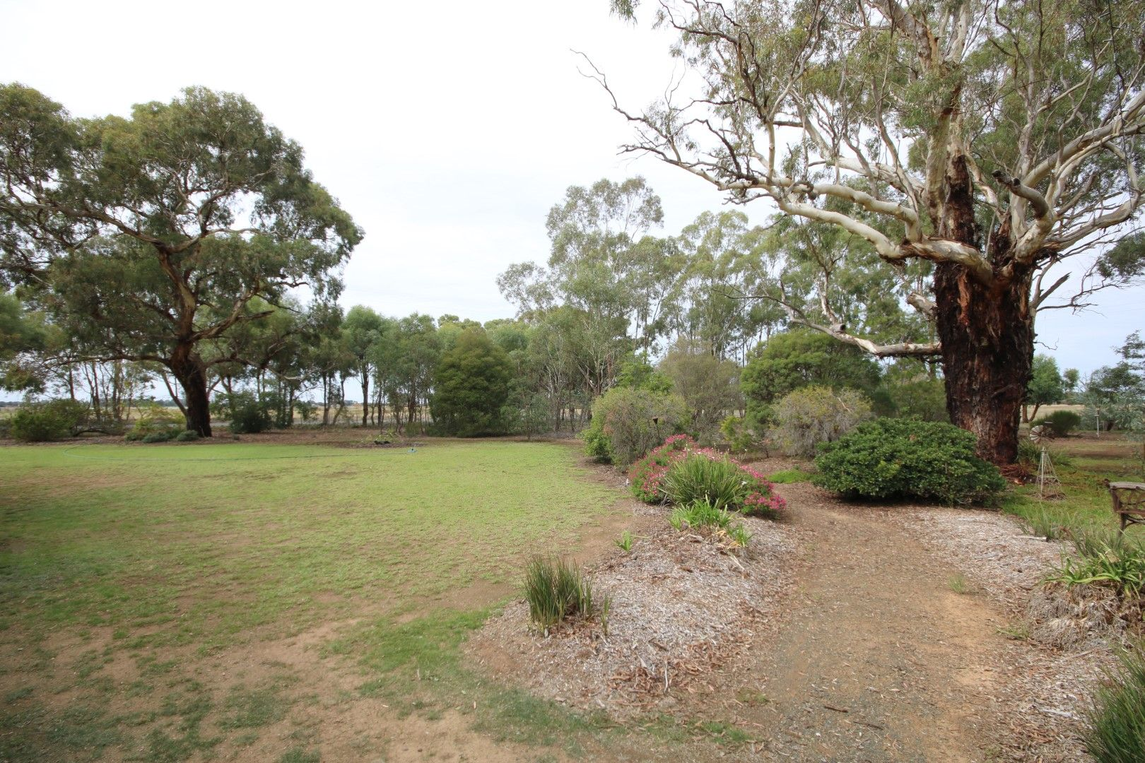 495 Lowe Road, Rochester VIC 3561, Image 1