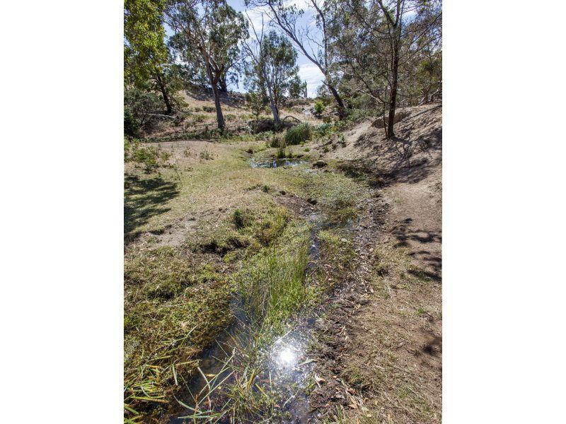 Back Creek Road, High Camp VIC 3764, Image 1