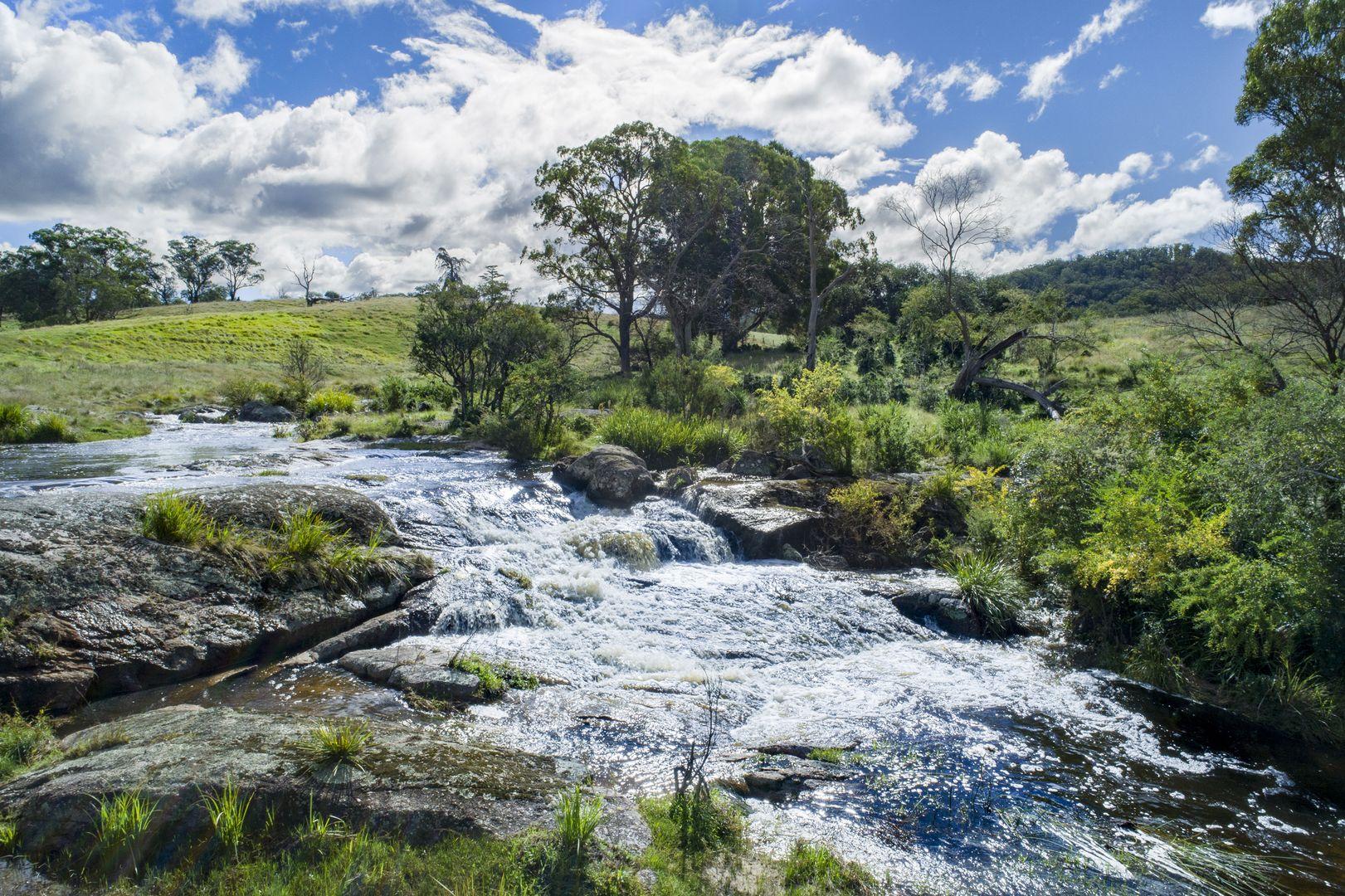 345 Black Swamp Road, Tenterfield NSW 2372, Image 1