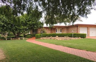 Picture of 22 Zoccoli St, Coonamble NSW 2829