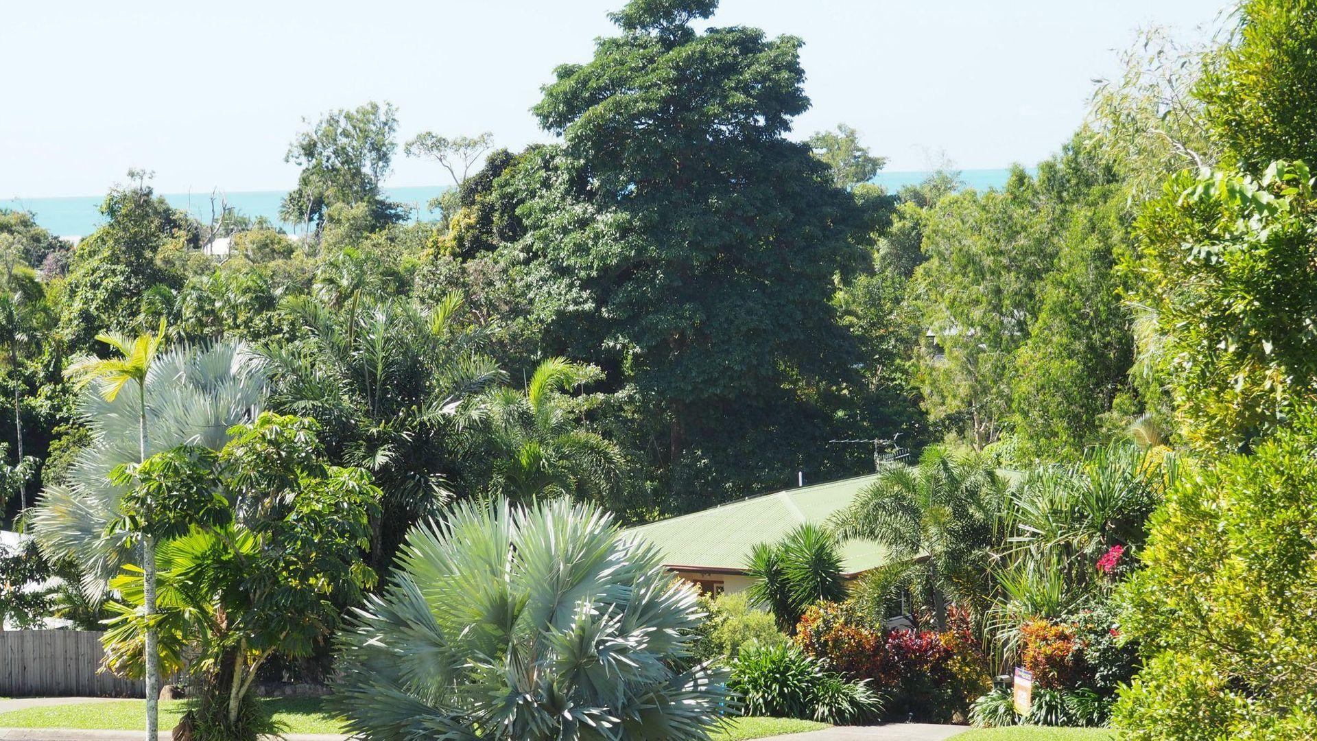 7 Dunkalli Crescent, Wongaling Beach QLD 4852, Image 1
