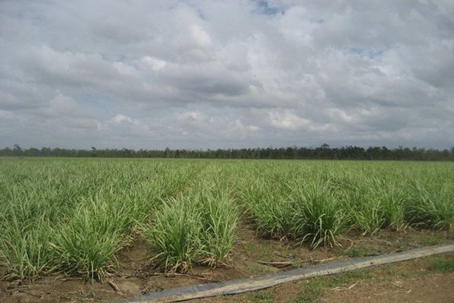 Picture of CLARE QLD 4807