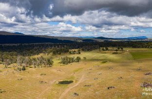 Picture of 132 Lindsays Road, Whitemore TAS 7303