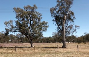 Picture of Leyburn Cunningham Road, Pratten QLD 4370