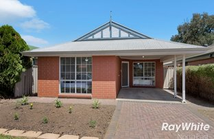 Picture of 18 Burchmore Court, Blair Athol SA 5084