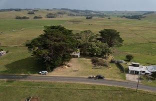Picture of 169 Comeback Road, Redpa TAS 7330