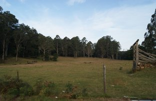 Picture of Runnyford NSW 2536