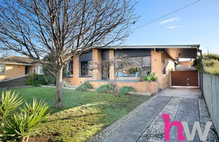 Picture of 40 Cambra Road, Belmont VIC 3216