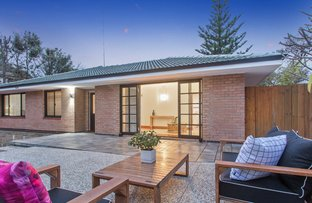 Picture of 138 Hastings Street, Scarborough WA 6019