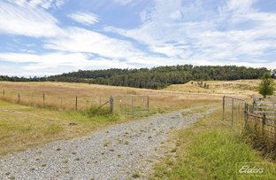 Picture of Lot A Browns Road, Loira TAS 7275