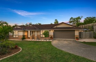 Picture of 8 Starlight Court, Springfield QLD 4300