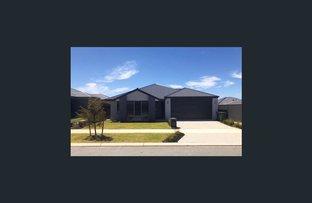 Picture of 40 Lancewood Street, Banksia Grove WA 6031