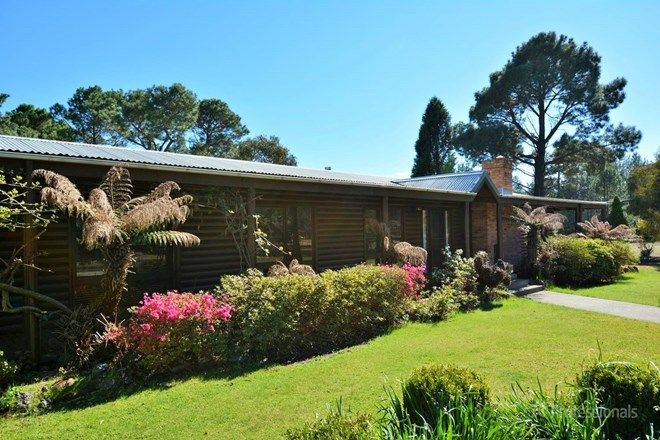 Picture of 56 Skelly Road, LIDSDALE NSW 2790