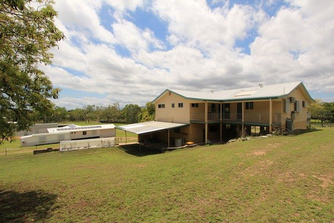 Picture of 473 Dalrymple Road, MOUNT LOUISA QLD 4814