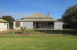 Picture of 48-50 MAHONGA STREET, Jerilderie NSW 2716