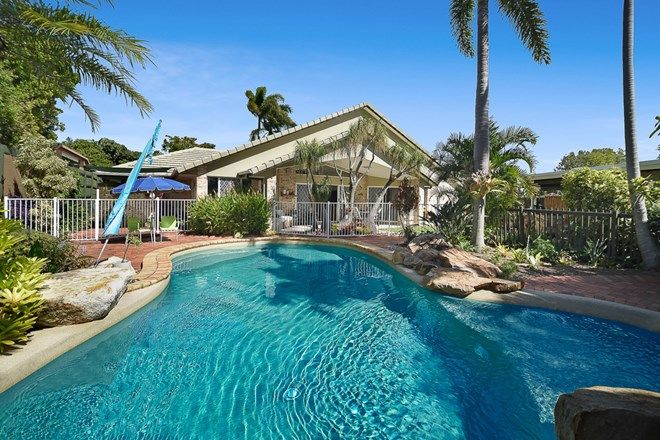 Picture of 5 Tuckeroo Court, COOLUM BEACH QLD 4573