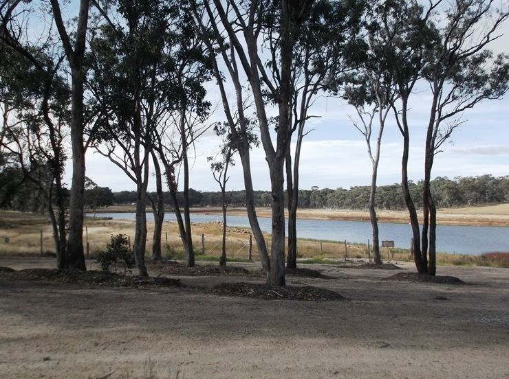 487 Eukey Road, Storm King QLD 4380, Image 0