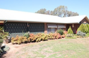 Picture of 210 Race Course Road, Tocumwal NSW 2714